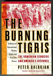 Book-cover-the burning tigris.jpg